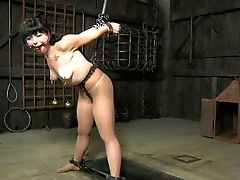 Restraint Bondage Master Fastens The Nip Clothespins To Her Along With Some Weights